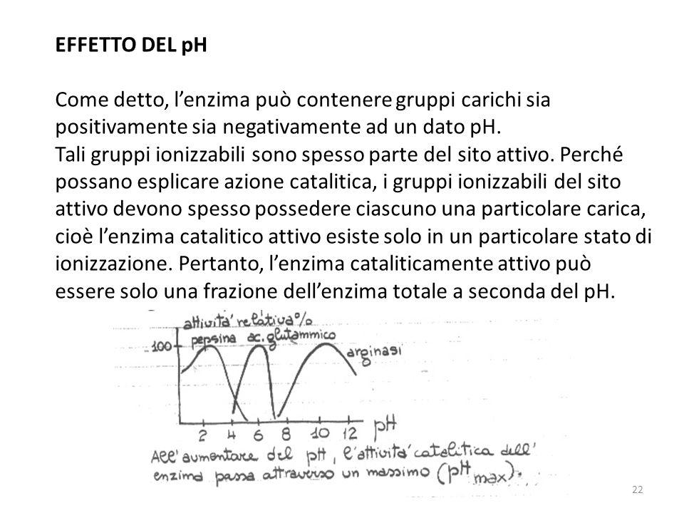 22 EFFETTO DEL pH Come detto, lenzima può contenere gruppi carichi sia positivamente sia negativamente ad un dato pH.