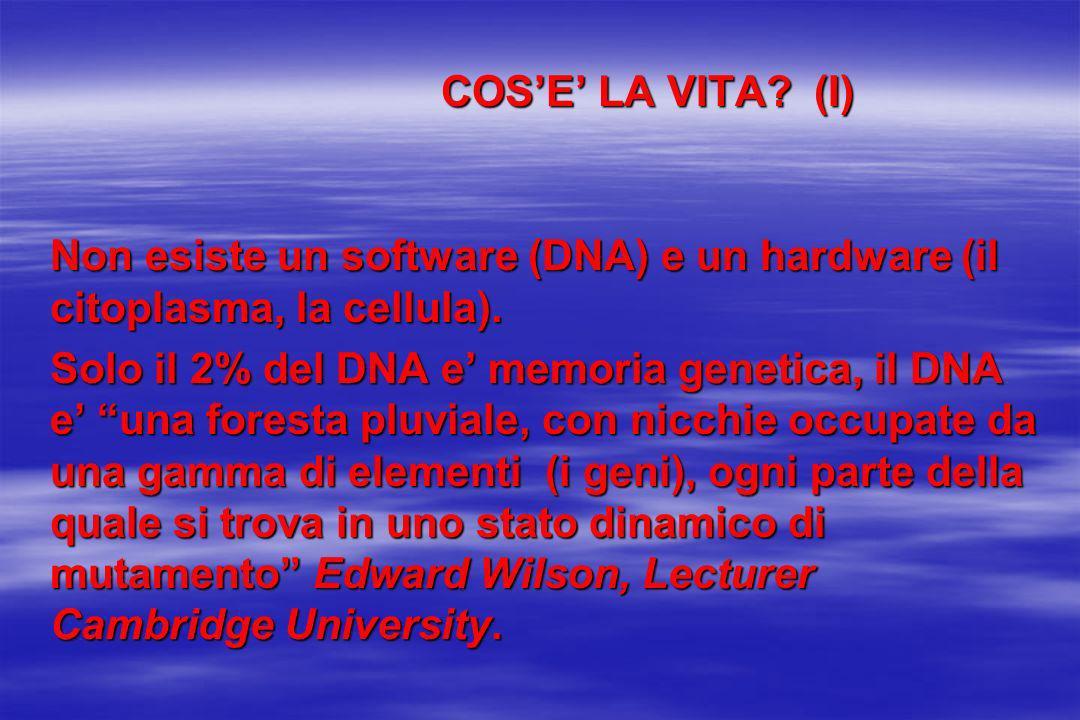 COSE LA VITA? (I) COSE LA VITA? (I) Non esiste un software (DNA) e un hardware (il citoplasma, la cellula). Solo il 2% del DNA e memoria genetica, il