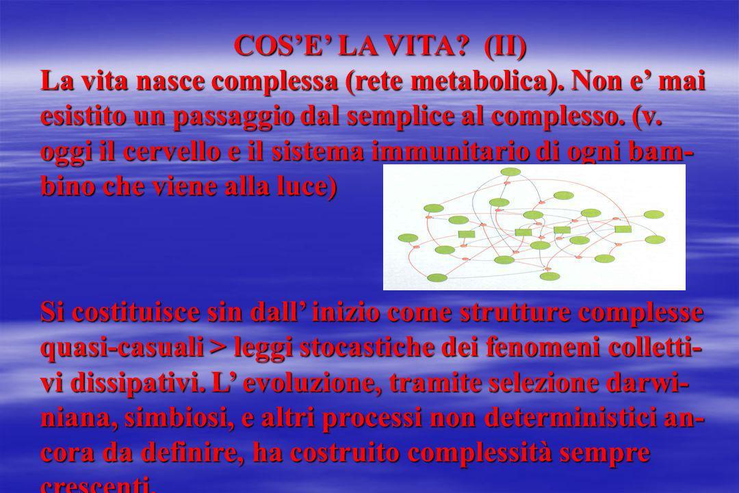 COSE LA VITA? (II) La vita nasce complessa (rete metabolica). Non e mai esistito un passaggio dal semplice al complesso. (v. oggi il cervello e il sis