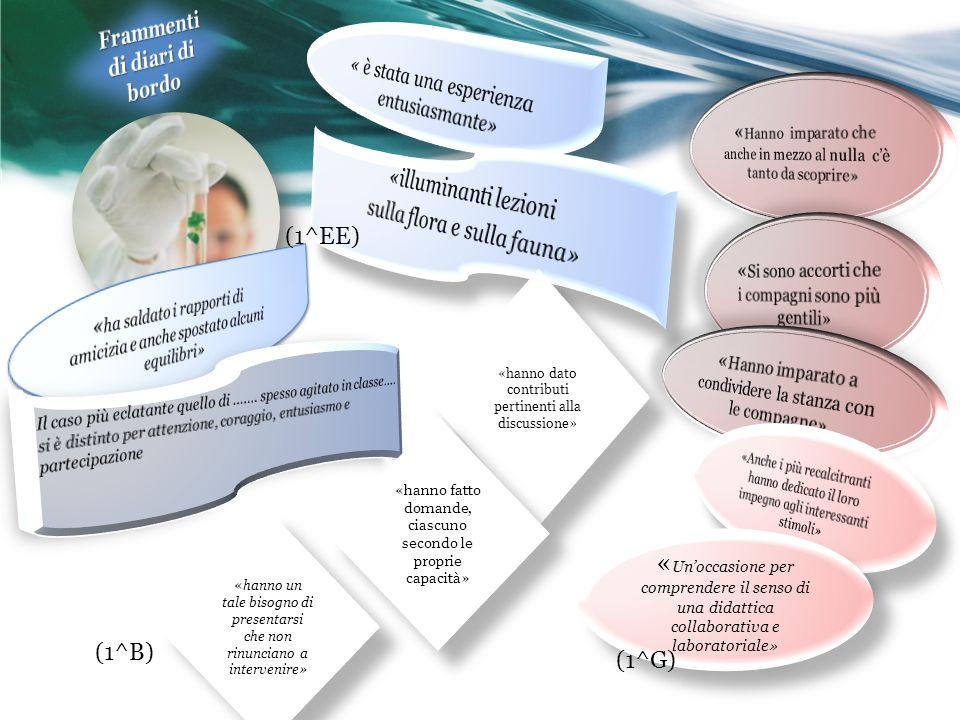 Obiettivi sul coinvolgimento motivazionale Nel complesso raggiunti Raggiunti anche gli obiettivi sulla relazionalità e la collaborazione Sulla negoziazione dei significati e dei punti di vista