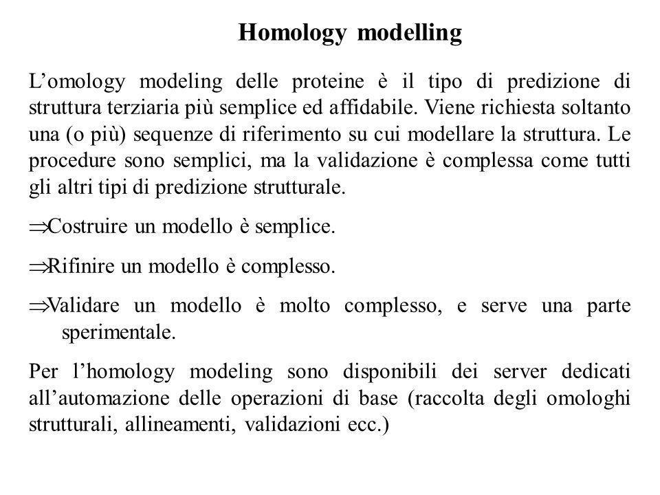 Homology modelling Lomology modeling delle proteine è il tipo di predizione di struttura terziaria più semplice ed affidabile. Viene richiesta soltant