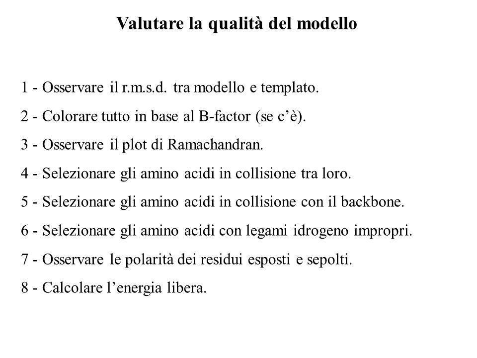 Valutare la qualità del modello 1 - Osservare il r.m.s.d. tra modello e templato. 2 - Colorare tutto in base al B-factor (se cè). 3 - Osservare il plo