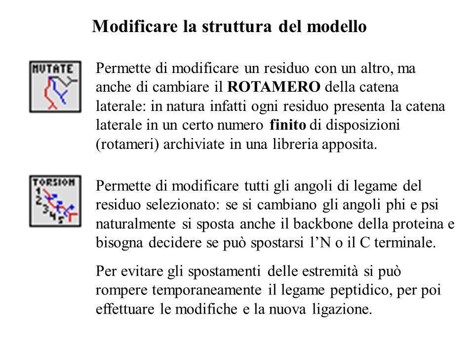 Modificare la struttura del modello Permette di modificare un residuo con un altro, ma anche di cambiare il ROTAMERO della catena laterale: in natura