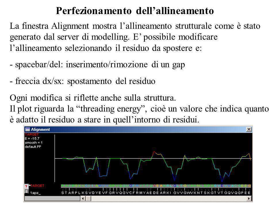 Perfezionamento dellallineamento La finestra Alignment mostra lallineamento strutturale come è stato generato dal server di modelling. E possibile mod