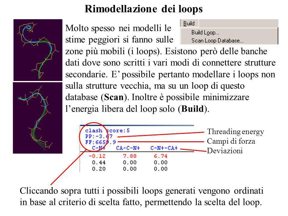 Rimodellazione dei loops Molto spesso nei modelli le stime peggiori si fanno sulle zone più mobili (i loops). Esistono però delle banche dati dove son