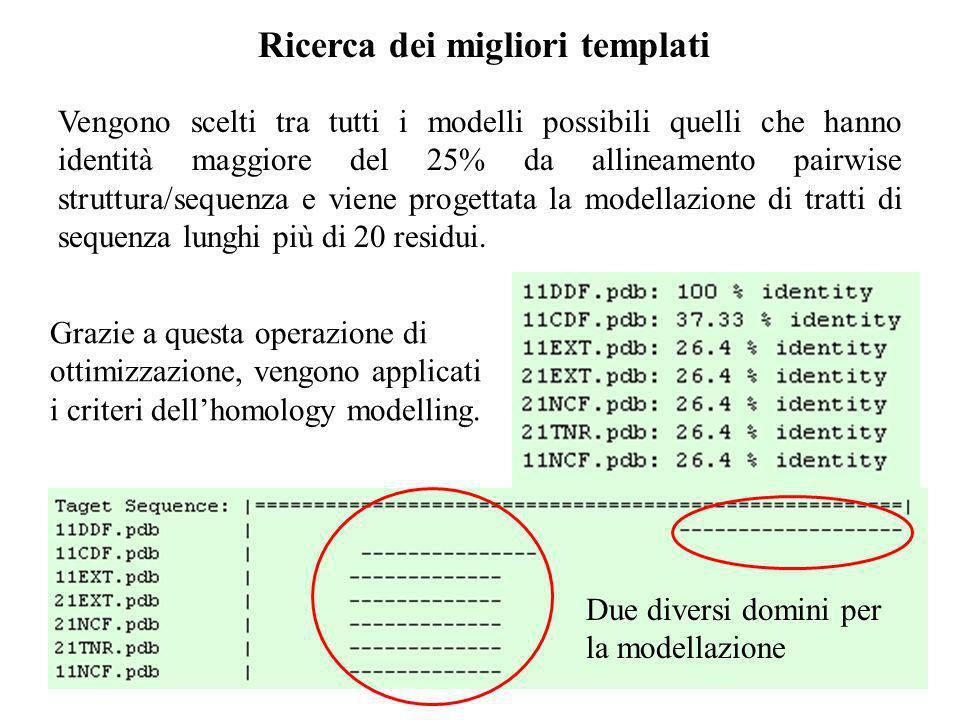 Ricerca dei migliori templati Vengono scelti tra tutti i modelli possibili quelli che hanno identità maggiore del 25% da allineamento pairwise struttu