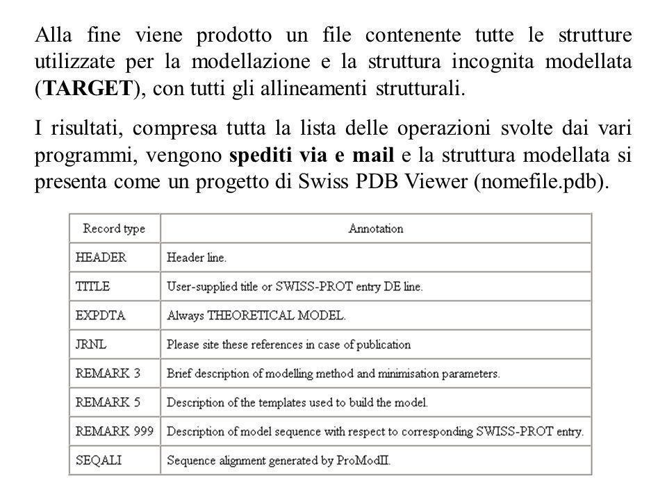 Alla fine viene prodotto un file contenente tutte le strutture utilizzate per la modellazione e la struttura incognita modellata (TARGET), con tutti g
