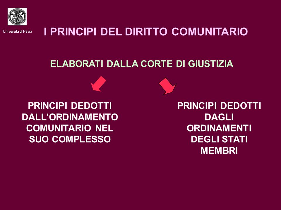 I PRINCIPI DEL DIRITTO COMUNITARIO ELABORATI DALLA CORTE DI GIUSTIZIA PRINCIPI DEDOTTI DALLORDINAMENTO COMUNITARIO NEL SUO COMPLESSO PRINCIPI DEDOTTI