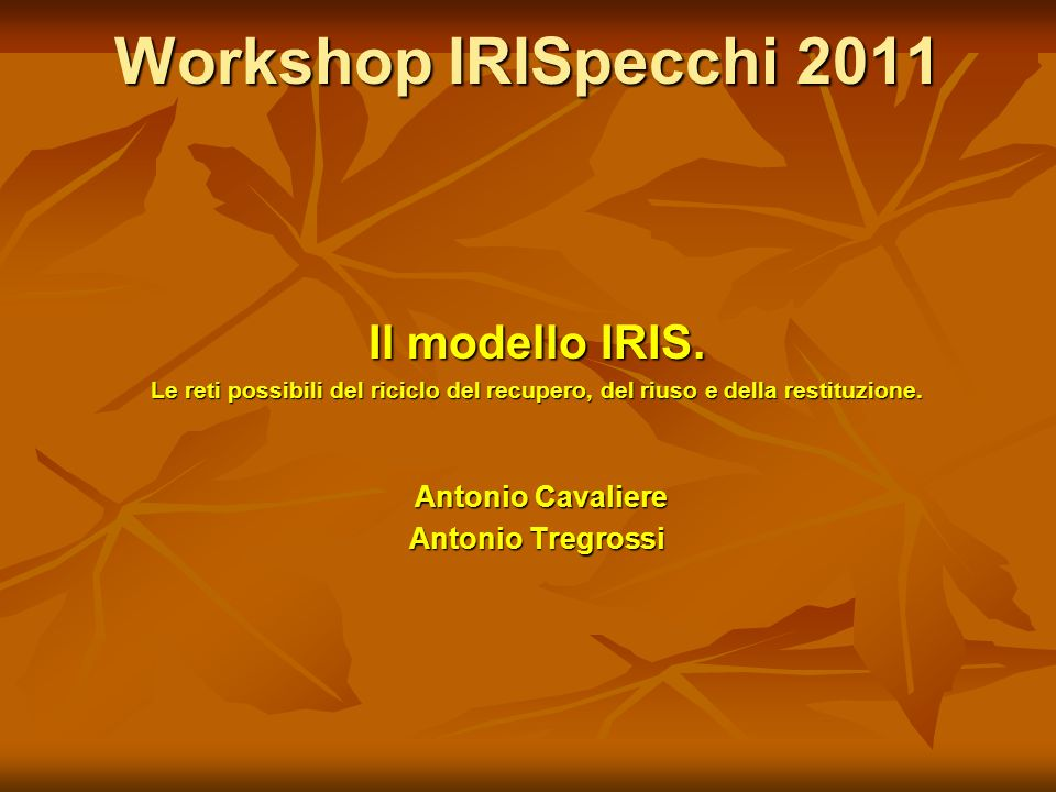 Workshop IRISpecchi 2011 Il modello IRIS.