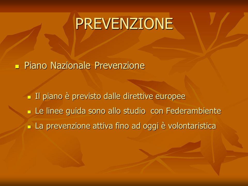 PREVENZIONE Piano Nazionale Prevenzione Piano Nazionale Prevenzione Il piano è previsto dalle direttive europee Il piano è previsto dalle direttive eu