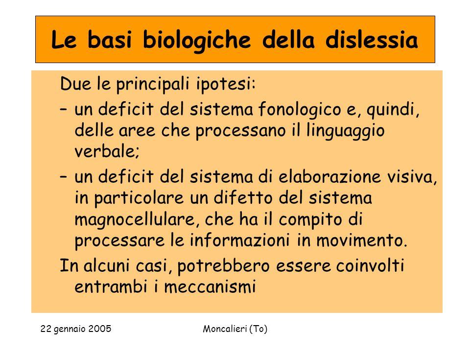 22 gennaio 2005Moncalieri (To) Le basi biologiche della dislessia Due le principali ipotesi: –un deficit del sistema fonologico e, quindi, delle aree