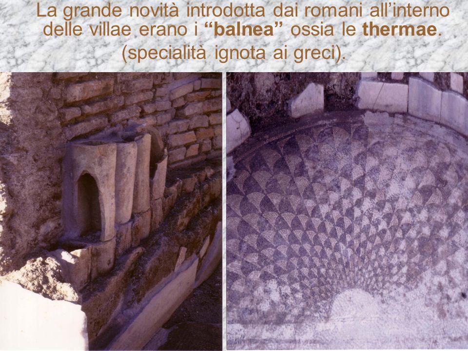 La grande novità introdotta dai romani allinterno delle villae erano i balnea ossia le thermae. (specialità ignota ai greci).