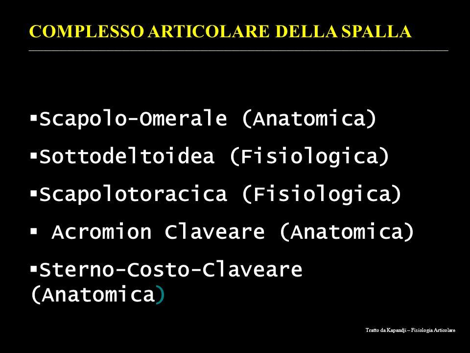 Tratto da Kapandji – Fisiologia Articolare COMPLESSO ARTICOLARE DELLA SPALLA _________________________________________________________________________