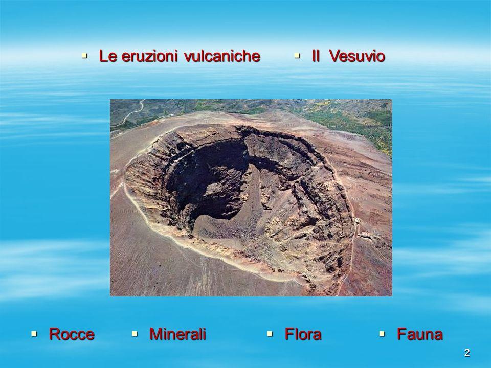 2 Flora Flora Fauna Fauna Minerali Minerali Rocce Rocce Le eruzioni vulcaniche Le eruzioni vulcaniche Il Vesuvio Il Vesuvio