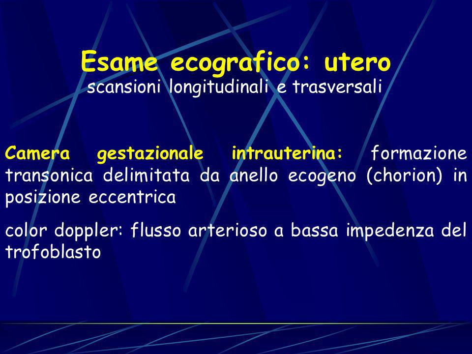 Esame ecografico: utero scansioni longitudinali e trasversali Camera gestazionale intrauterina: formazione transonica delimitata da anello ecogeno (ch