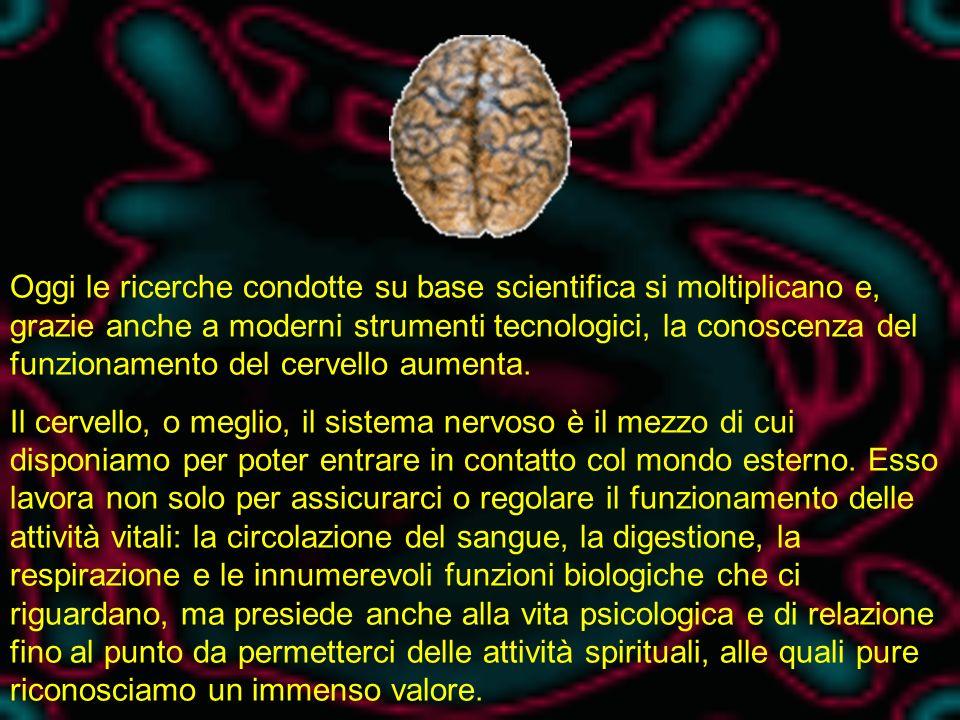 Oggi le ricerche condotte su base scientifica si moltiplicano e, grazie anche a moderni strumenti tecnologici, la conoscenza del funzionamento del cervello aumenta.