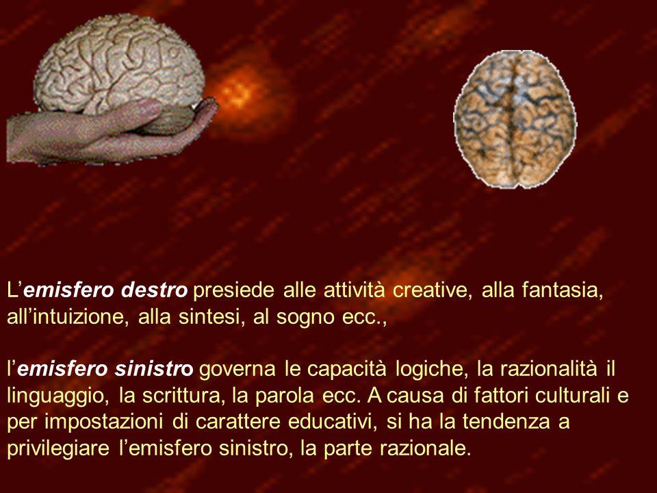 Lemisfero destro presiede alle attività creative, alla fantasia, allintuizione, alla sintesi, al sogno ecc., lemisfero sinistro governa le capacità logiche, la razionalità il linguaggio, la scrittura, la parola ecc.