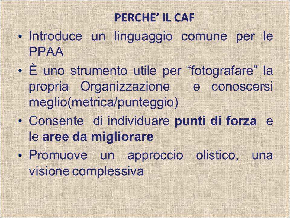 PERCHE IL CAF Introduce un linguaggio comune per le PPAA È uno strumento utile per fotografare la propria Organizzazione e conoscersi meglio(metrica/punteggio) Consente di individuare punti di forza e le aree da migliorare Promuove un approccio olistico, una visione complessiva