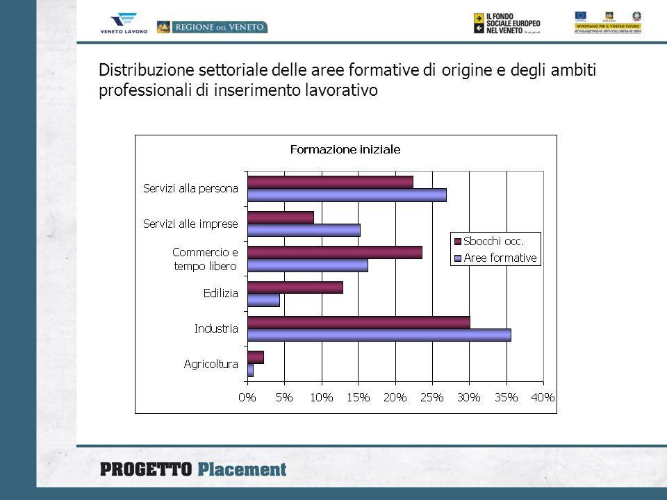 Distribuzione settoriale delle aree formative di origine e degli ambiti professionali di inserimento lavorativo