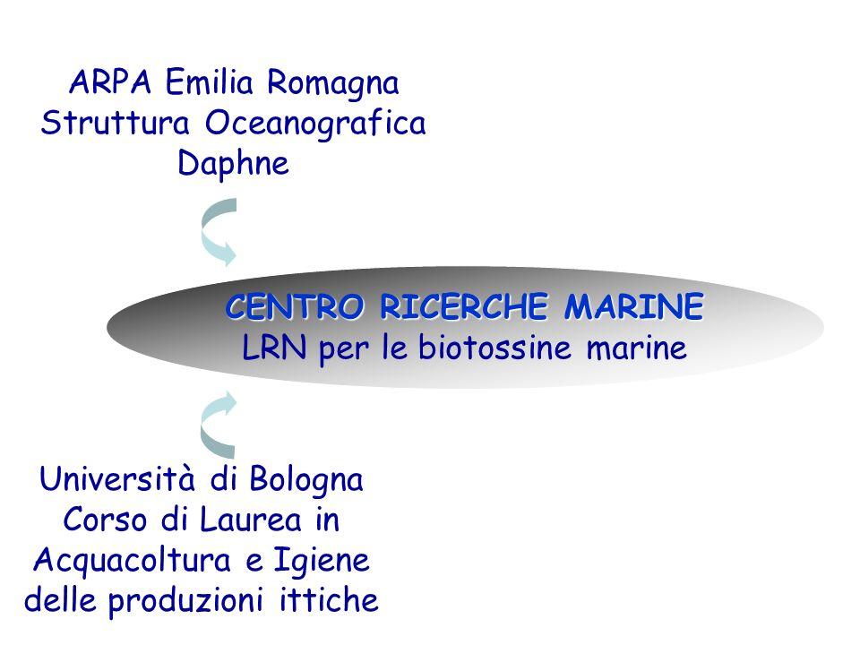 Università di Bologna Corso di Laurea in Acquacoltura e Igiene delle produzioni ittiche ARPA Emilia Romagna Struttura Oceanografica Daphne CENTRO RICE