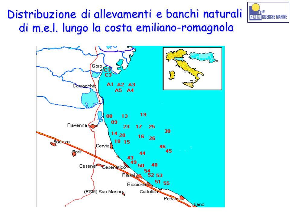 Distribuzione di allevamenti e banchi naturali di m.e.l. lungo la costa emiliano-romagnola di m.e.l. lungo la costa emiliano-romagnola