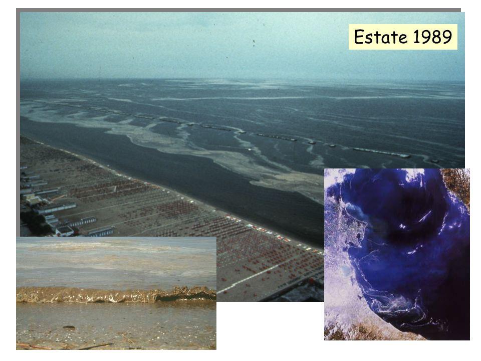 Estate 1989