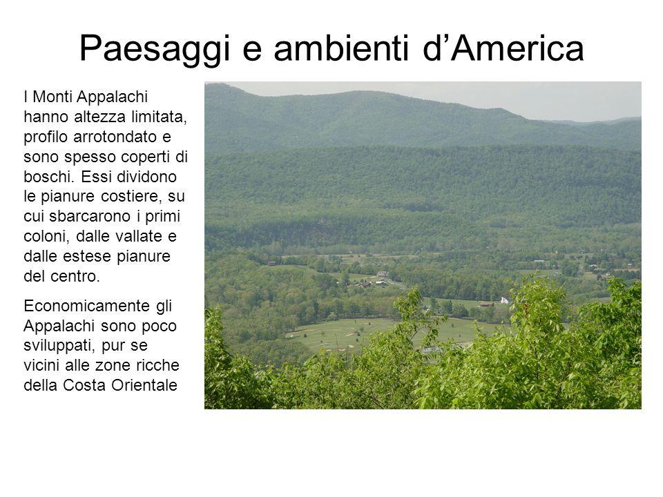 Paesaggi e ambienti dAmerica I Monti Appalachi hanno altezza limitata, profilo arrotondato e sono spesso coperti di boschi.