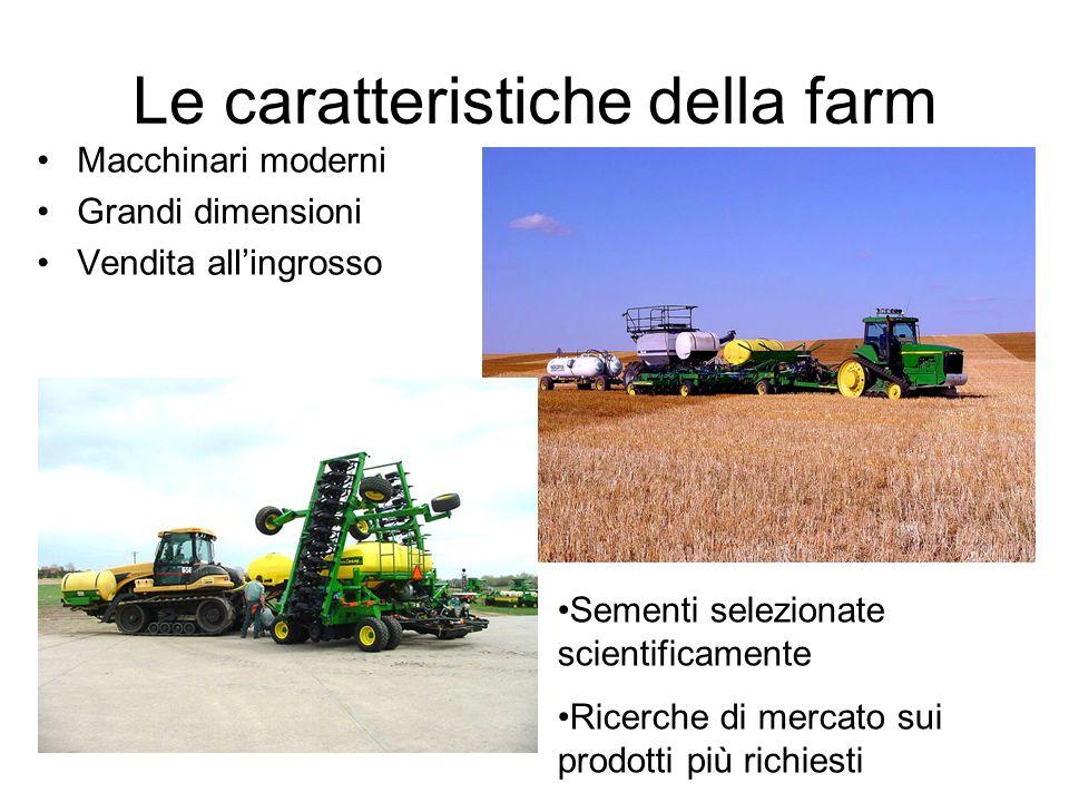 Le caratteristiche della farm Macchinari moderni Grandi dimensioni Vendita allingrosso Sementi selezionate scientificamente Ricerche di mercato sui prodotti più richiesti