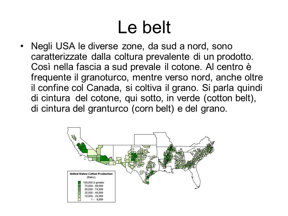 Le belt Negli USA le diverse zone, da sud a nord, sono caratterizzate dalla coltura prevalente di un prodotto.