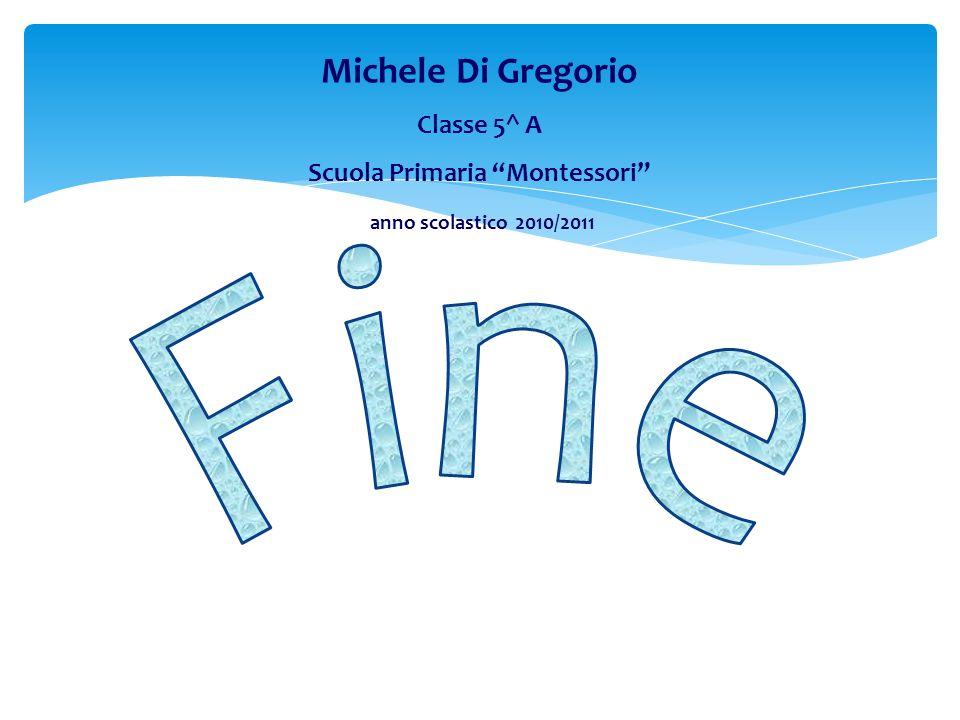 Michele Di Gregorio Classe 5^ A Scuola Primaria Montessori anno scolastico 2010/2011