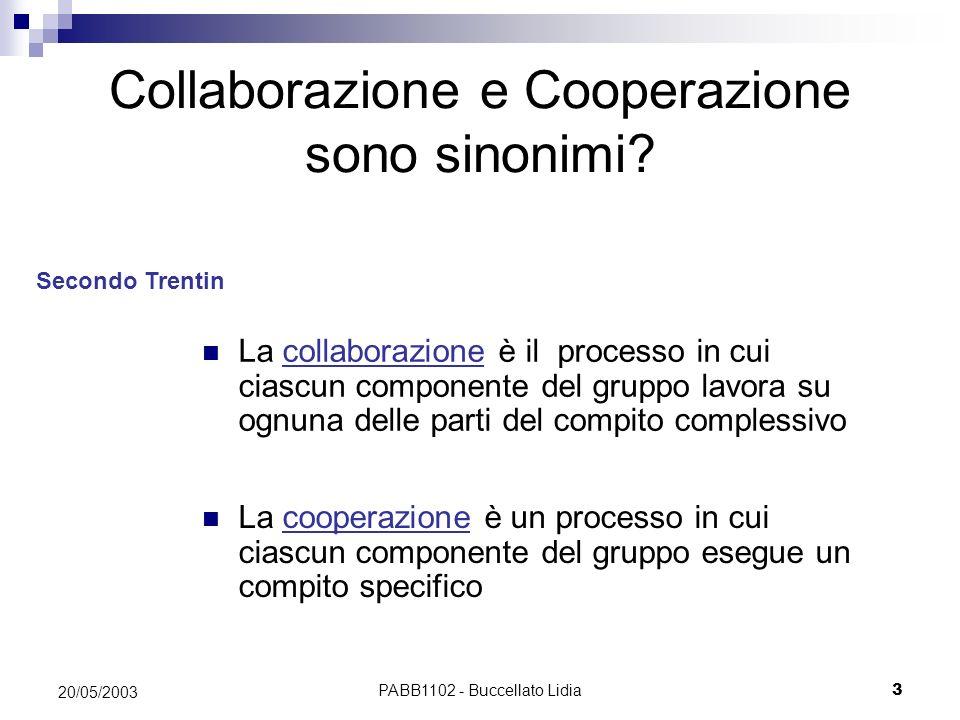 PABB1102 - Buccellato Lidia3 20/05/2003 Collaborazione e Cooperazione sono sinonimi? La cooperazione è un processo in cui ciascun componente del grupp
