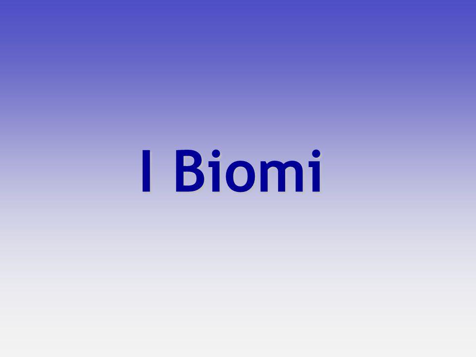 BIOMA: complesso degli ecosistemi di una particolare area geografica del pianeta, definiti in base al tipo di vegetazione dominante.