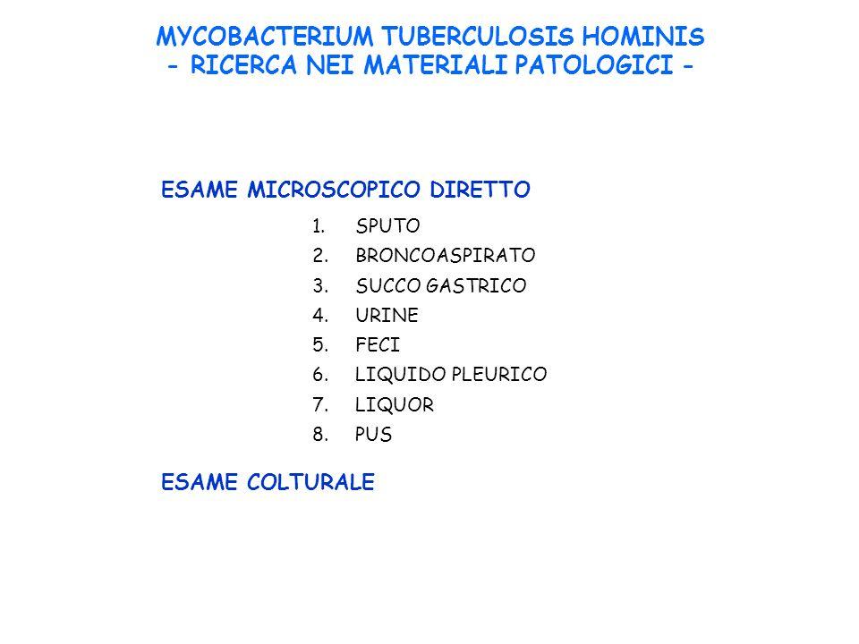 MYCOBACTERIUM TUBERCULOSIS HOMINIS - RICERCA NEI MATERIALI PATOLOGICI - 1.SPUTO 2.BRONCOASPIRATO 3.SUCCO GASTRICO 4.URINE 5.FECI 6.LIQUIDO PLEURICO 7.LIQUOR 8.PUS ESAME MICROSCOPICO DIRETTO ESAME COLTURALE