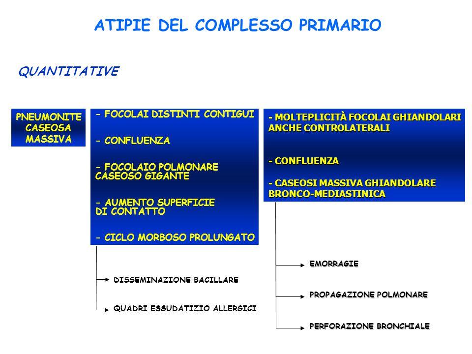 ATIPIE DEL COMPLESSO PRIMARIO QUANTITATIVE - FOCOLAI DISTINTI CONTIGUI - CONFLUENZA - FOCOLAIO POLMONARE CASEOSO GIGANTE - AUMENTO SUPERFICIE DI CONTATTO - CICLO MORBOSO PROLUNGATO PNEUMONITE CASEOSA MASSIVA - MOLTEPLICITÀ FOCOLAI GHIANDOLARI ANCHE CONTROLATERALI - CONFLUENZA - CASEOSI MASSIVA GHIANDOLARE BRONCO-MEDIASTINICA DISSEMINAZIONE BACILLARE QUADRI ESSUDATIZIO ALLERGICI EMORRAGIE PROPAGAZIONE POLMONARE PERFORAZIONE BRONCHIALE