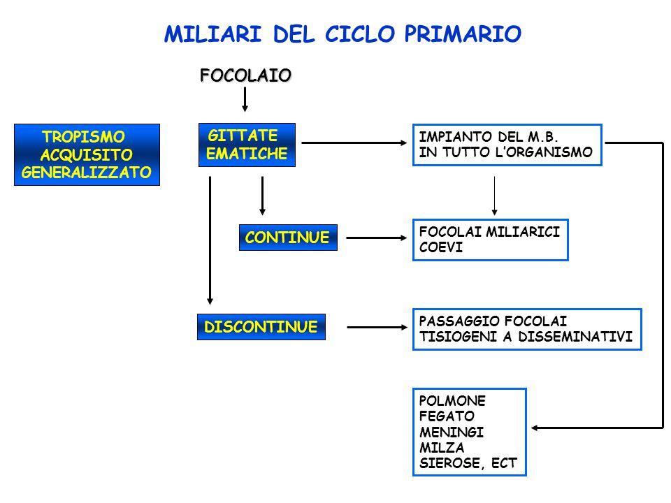 FOCOLAIO TROPISMO ACQUISITO GENERALIZZATO GITTATE EMATICHE IMPIANTO DEL M.B.