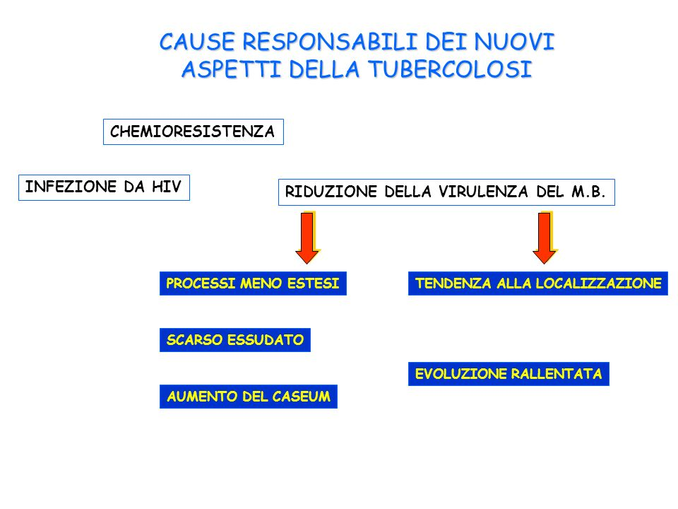 CAUSE RESPONSABILI DEI NUOVI ASPETTI DELLA TUBERCOLOSI CHEMIORESISTENZA RIDUZIONE DELLA VIRULENZA DEL M.B. PROCESSI MENO ESTESI SCARSO ESSUDATO AUMENT