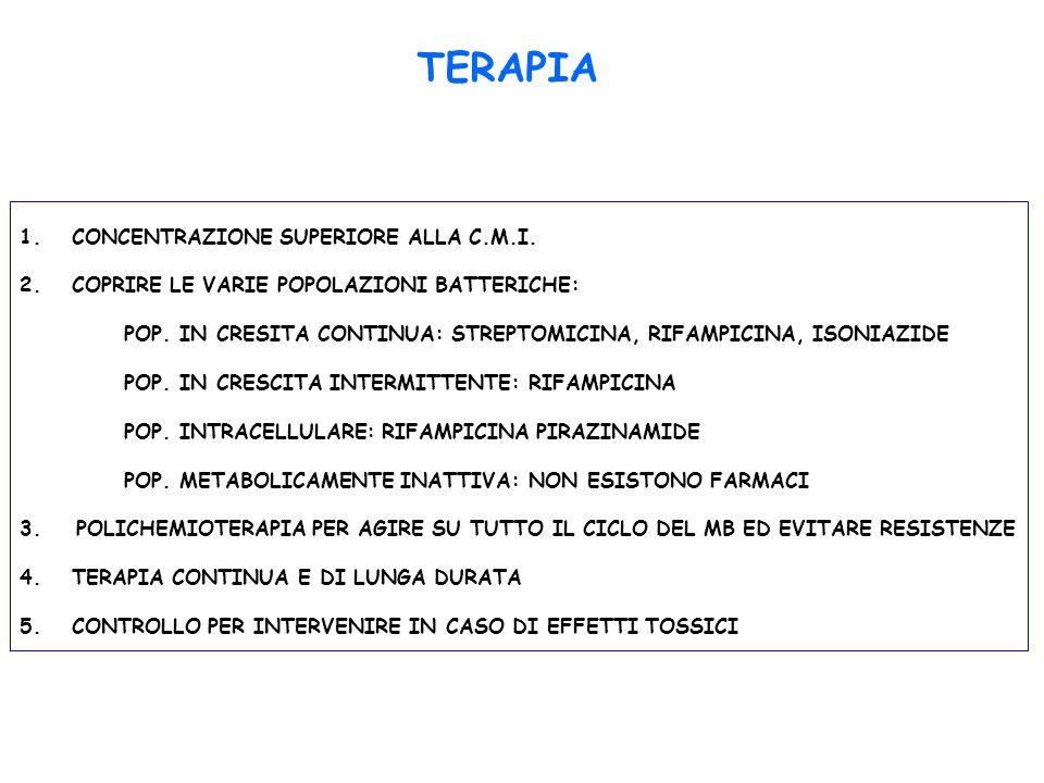 TERAPIA 1.CONCENTRAZIONE SUPERIORE ALLA C.M.I. 2.COPRIRE LE VARIE POPOLAZIONI BATTERICHE: POP. IN CRESITA CONTINUA: STREPTOMICINA, RIFAMPICINA, ISONIA