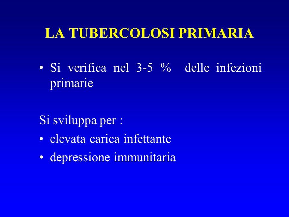 LA TUBERCOLOSI PRIMARIA Si verifica nel 3-5 % delle infezioni primarie Si sviluppa per : elevata carica infettante depressione immunitaria