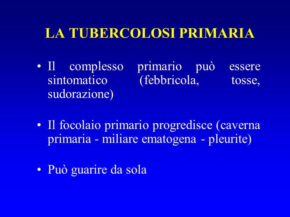 Il complesso primario può essere sintomatico (febbricola, tosse, sudorazione) Il focolaio primario progredisce (caverna primaria - miliare ematogena - pleurite) Può guarire da sola LA TUBERCOLOSI PRIMARIA