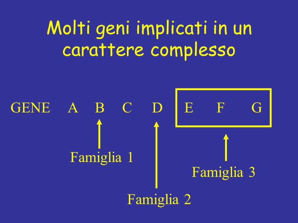 Molti geni implicati in un carattere complesso GENEABCDEFG Famiglia 1 Famiglia 3 Famiglia 2