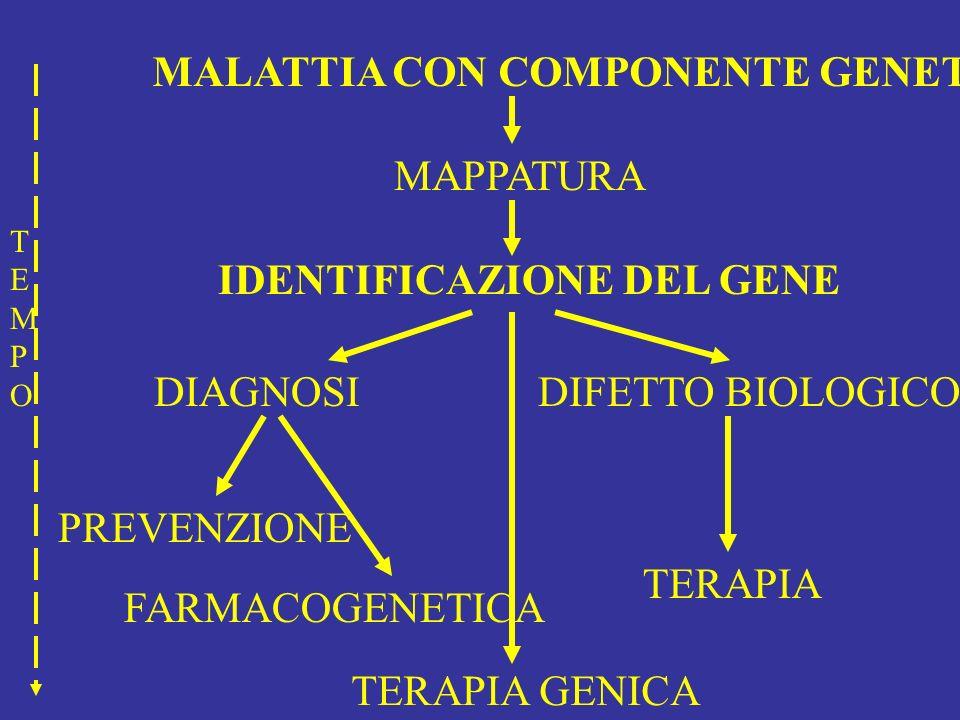 MALATTIA CON COMPONENTE GENETICA MAPPATURA IDENTIFICAZIONE DEL GENE DIAGNOSI PREVENZIONE DIFETTO BIOLOGICO TERAPIA TERAPIA GENICA TEMPOTEMPO FARMACOGE