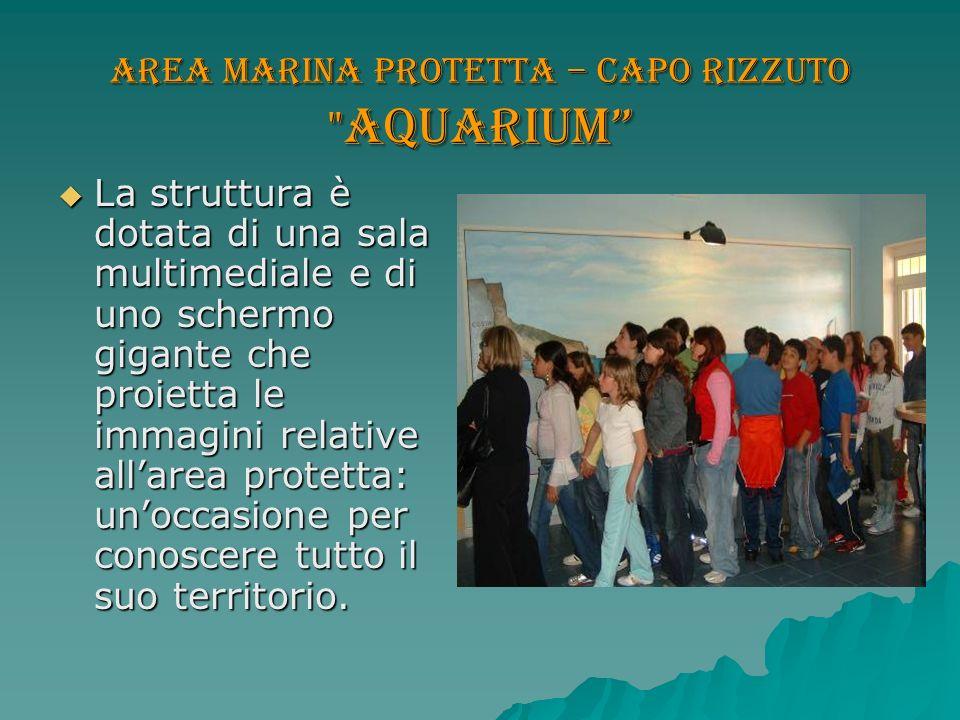 Area marina protetta – Capo Rizzuto