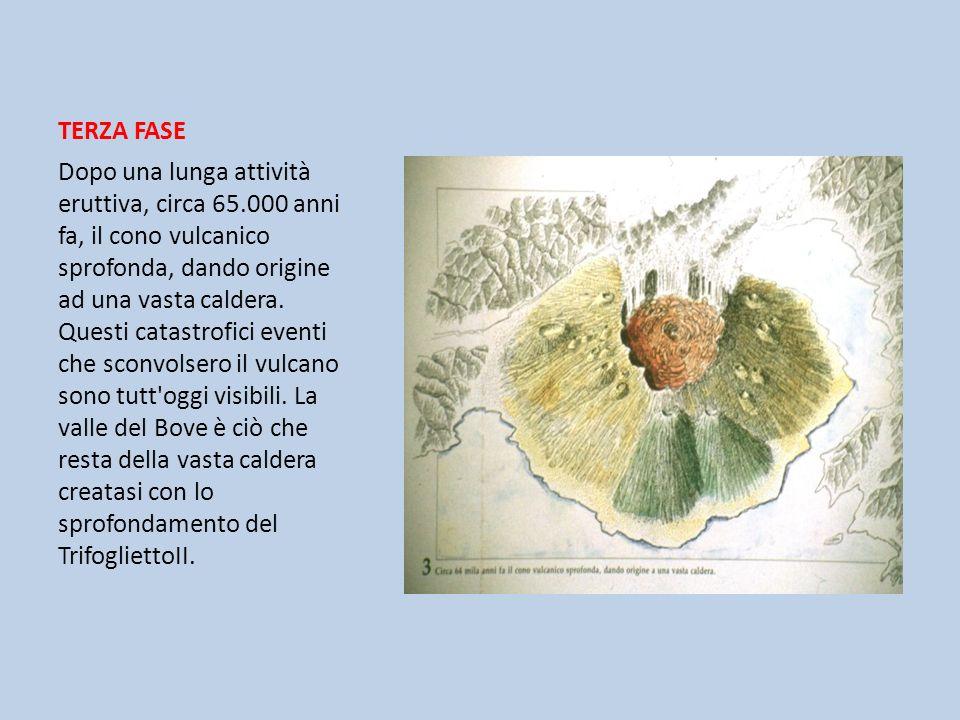 TERZA FASE Dopo una lunga attività eruttiva, circa 65.000 anni fa, il cono vulcanico sprofonda, dando origine ad una vasta caldera. Questi catastrofic