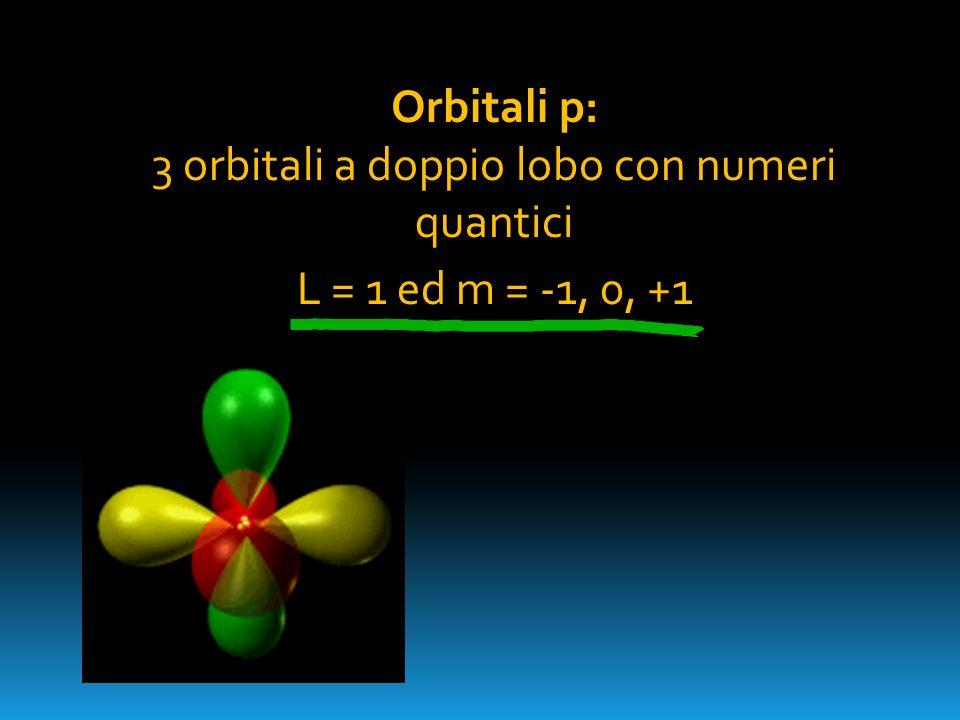 Orbitali p: 3 orbitali a doppio lobo con numeri quantici L = 1 ed m = -1, 0, +1