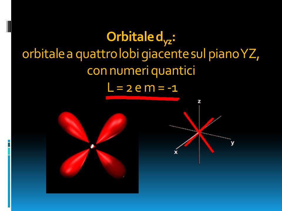 Orbitale d yz : orbitale a quattro lobi giacente sul piano YZ, con numeri quantici L = 2 e m = -1