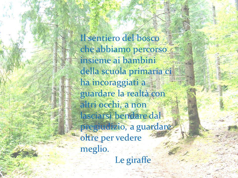 Il sentiero del bosco che abbiamo percorso insieme ai bambini della scuola primaria ci ha incoraggiati a guardare la realtà con altri occhi, a non las