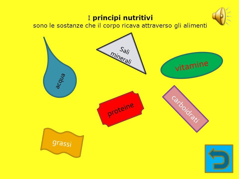 Il sistema digerente di ogni essere vivente ha il compito di 1.introdurre 2.digerire 3.assorbire i principi nutritivi contenuti negli alimenti elimina