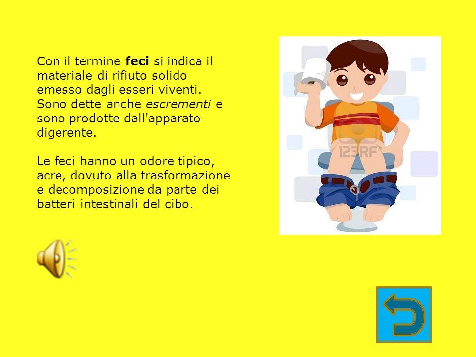 I principi nutritivi sono le sostanze che il corpo ricava attraverso gli alimenti vitamine Sali minerali acqua carboidrati grassi proteine