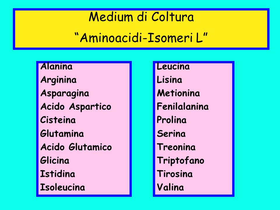 Alanina Arginina Asparagina Acido Aspartico Cisteina Glutamina Acido Glutamico Glicina Istidina Isoleucina Medium di Coltura Aminoacidi-Isomeri L Leuc