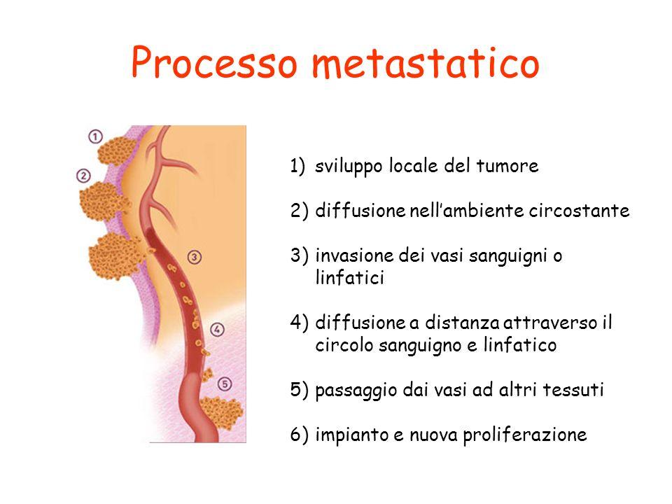 Processo metastatico 1)sviluppo locale del tumore 2)diffusione nellambiente circostante 3)invasione dei vasi sanguigni o linfatici 4)diffusione a dist